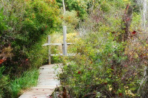 Nature center 020_blog