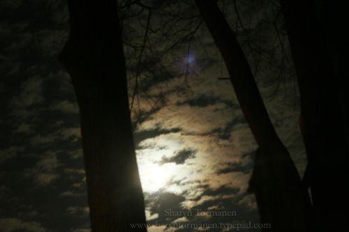Blog_043