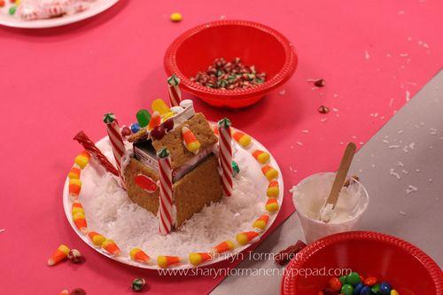 Blog_gingerbread house_brian_mark 022
