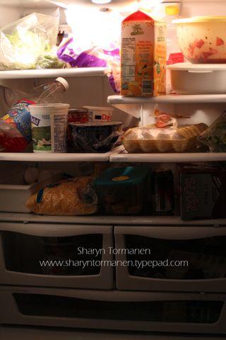 Blog_fridge1