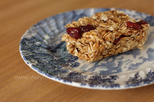 Blog_granola bar