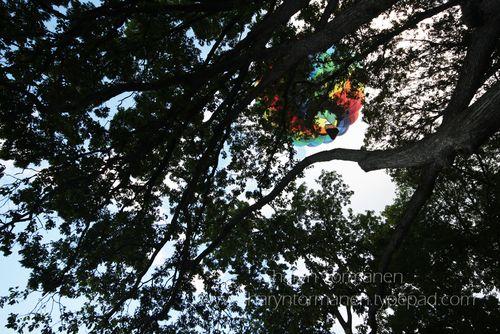 Blog_hot air balloon 126