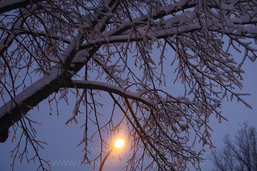 Blog_first snow 012
