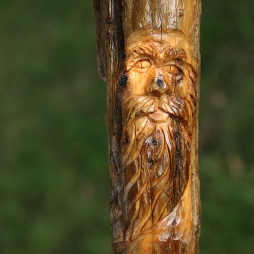 Etsy_carved walking stick 007