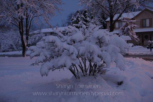 Blog_first snow 008