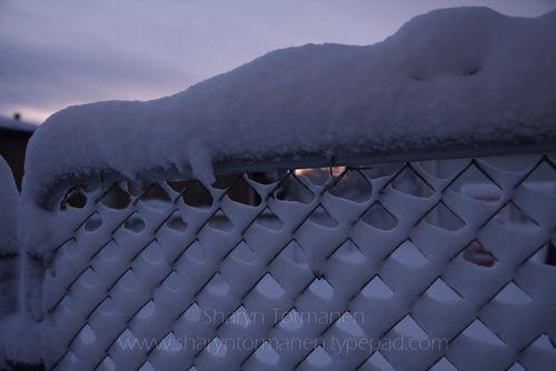 Blog_first snow 007