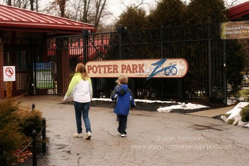 Blog_potter park zoo 002