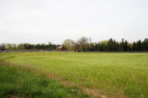 Blog_greenfield village 003