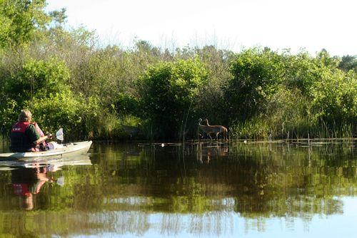 Blog_kayaking_bishop_julie 034