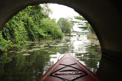 Blog_kayaking_thompson 030