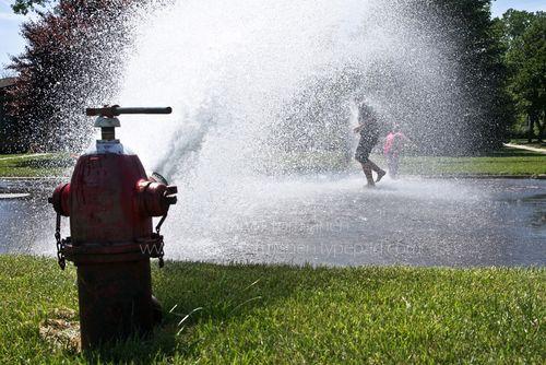Blog_fire hydrant 024