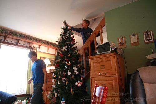 Blog.festival of lights_tree 015
