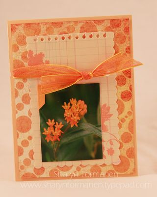 World card making day 042