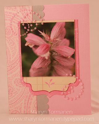 World card making day 045