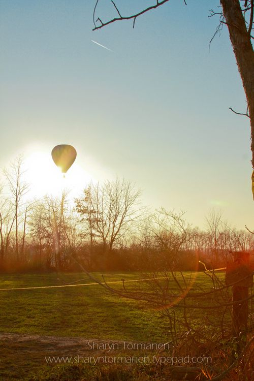 Blog.hot air balloon 065