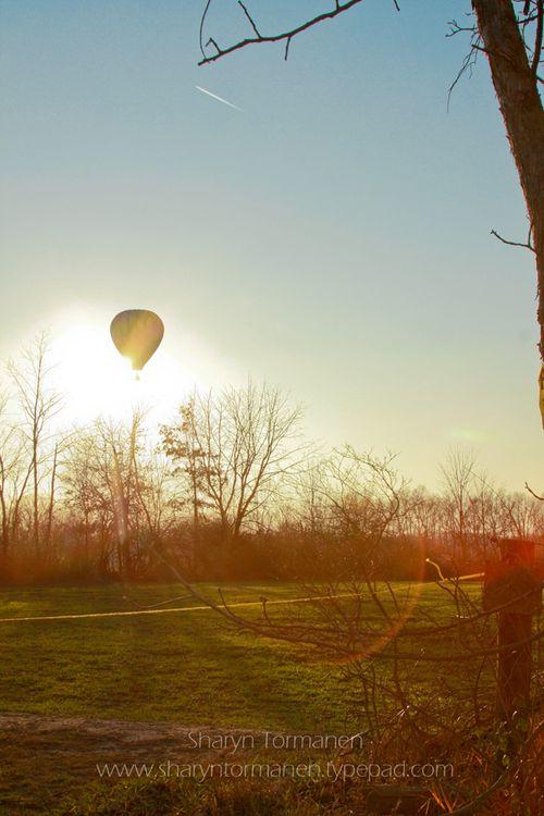 Blog.hot air balloon 065