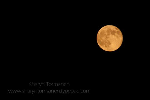 Blog_super moon raw 012-2