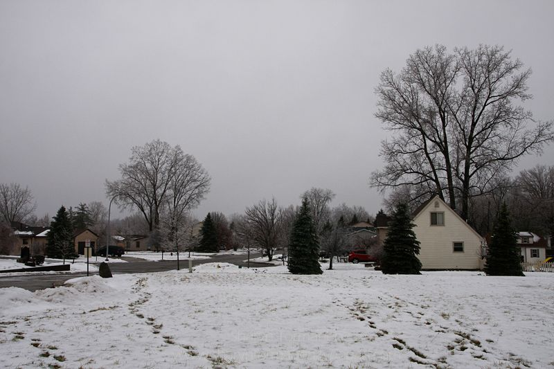Blog_ice storm part two 096