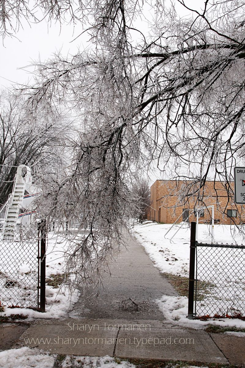 Blog_ice storm part two 044