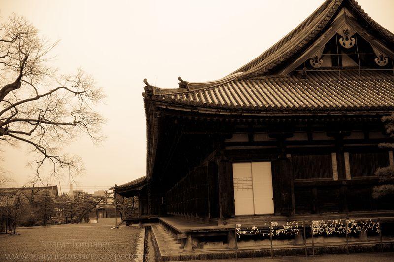 Blog_japan via camera 106