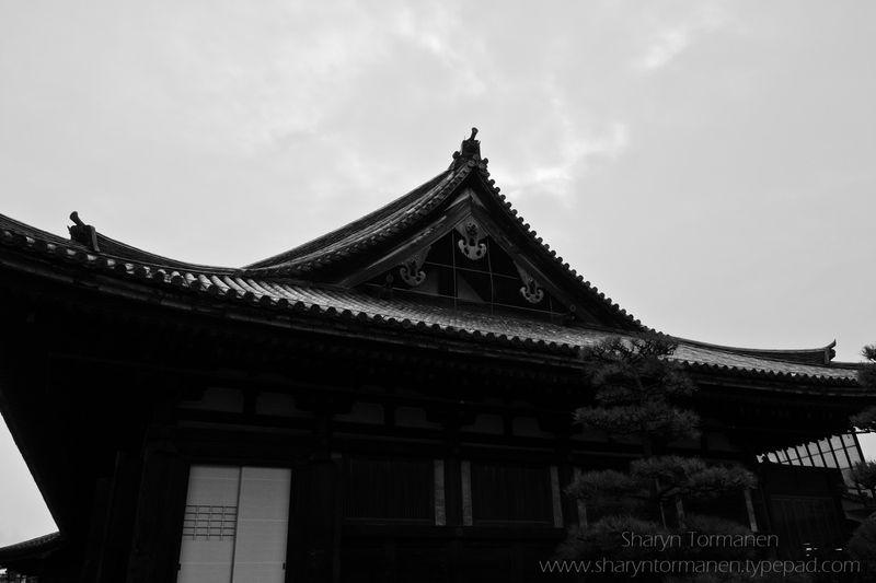 Blog_japan via camera 109