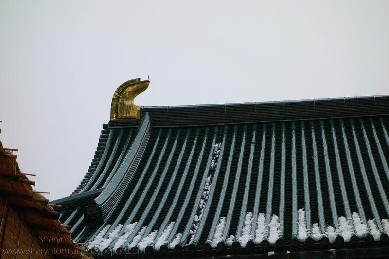Blog_japan via camera 078