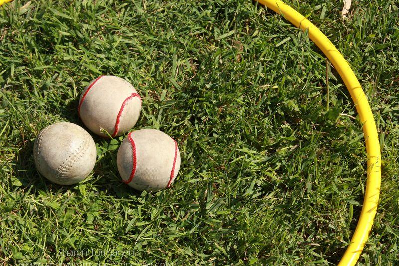 Blog_field day 156