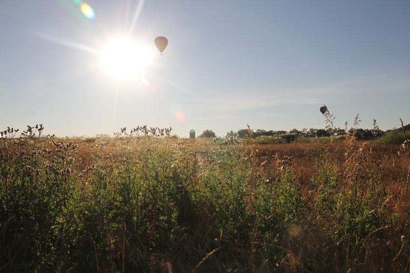 B_ballooning 035_edit