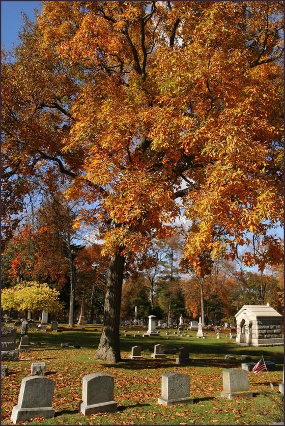 Fall_cemetery